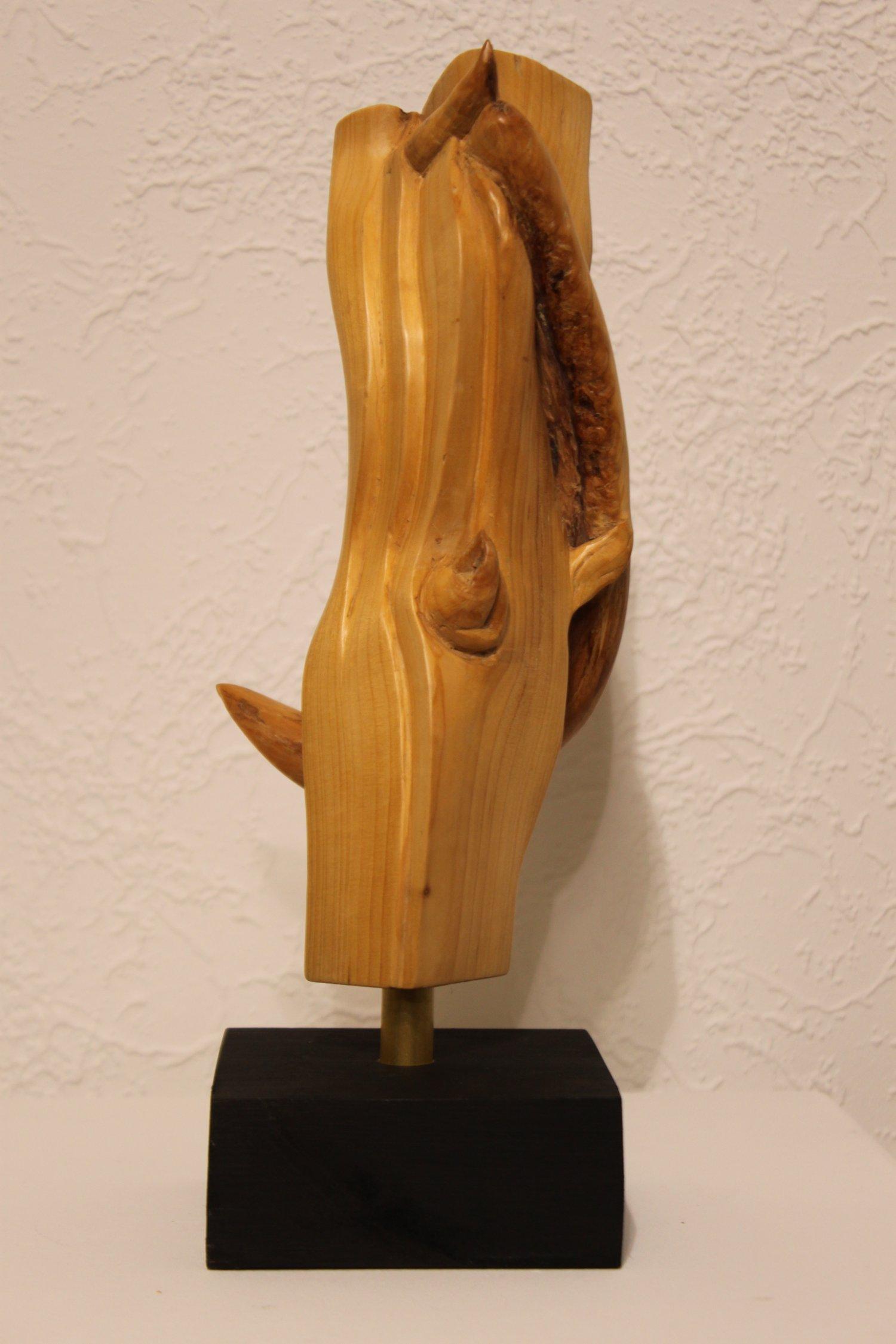 Dornig - Holzskulptur Peter Hudlet